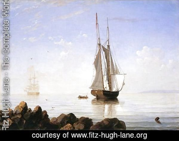 Fitz Hugh Lane - Sunny Morning, Gloucester Harbor